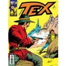 Tex Coleção 371 - Emboscada no Black Canyon